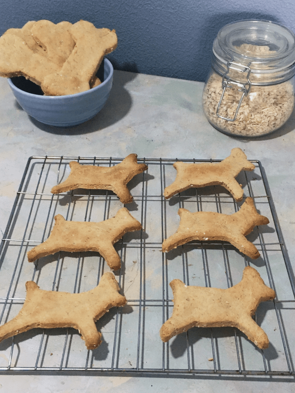 dog shape biscuits