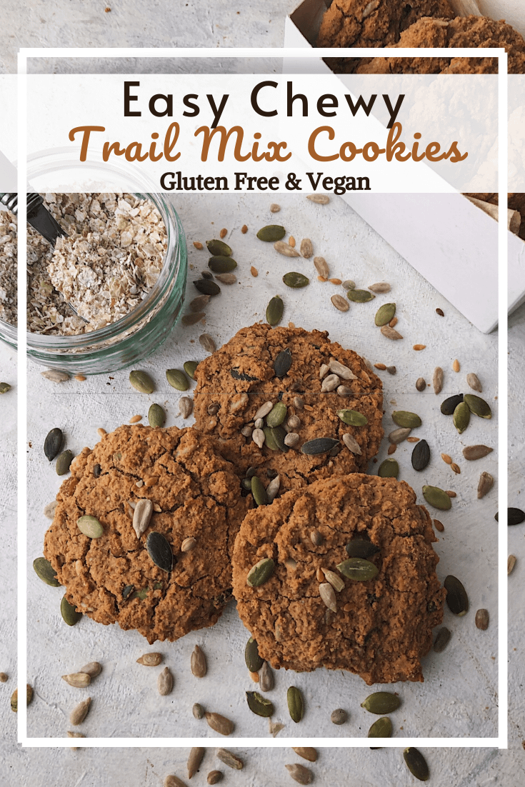 Trail Mix Cookies (GF, VG)