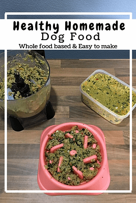 Healthy and Easy Homemade Dog Food (GF, DF)